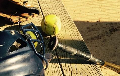 Girls Softball Crushes Opponents