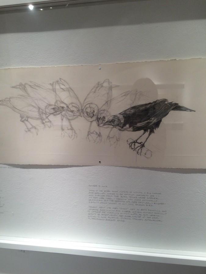 Gena+Siepel+visited+Peddie+to+display+her+artwork+of+bird+taxidermy.