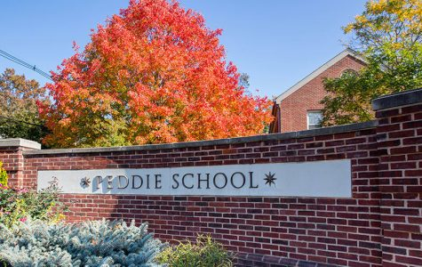 New Additions to Peddie Faculty 2018